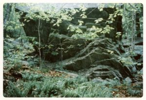 Overview of the outcropping at Woodruff Cave