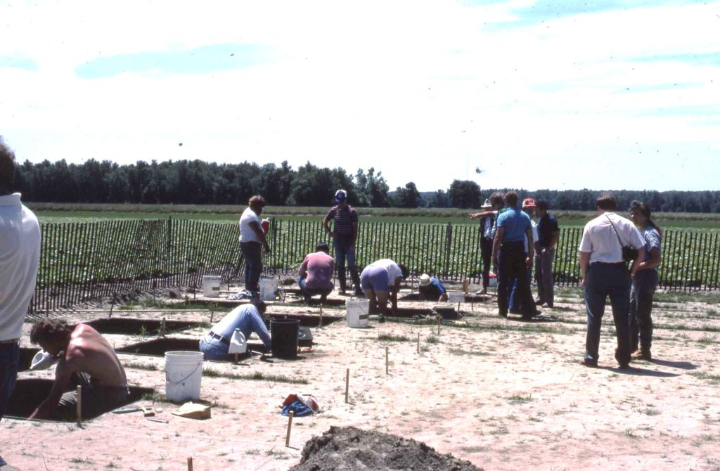 View of Morgan site excavations